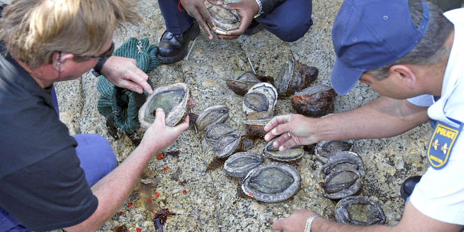 An influx of organised crime, concentrating on abalone poaching, has terrified Overstrand residents and put local police to the test. (Photo: Yunus Mohamed / Gallo)